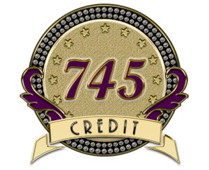 Custom Logo for 745 Credit